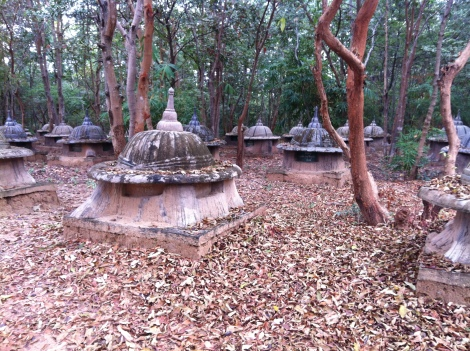 The Elephant graveyard - they bury the elephant for several years first to allow it to decompose and then retreive some of the special bones like the skull and leg bones to put in the upper portion. Mahouts and their families visit the graveyard and pay respect to the lost family members.
