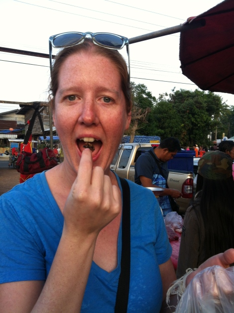 We visited the local market one day and I couldn't resist trying the local delicacy - fried crickets!