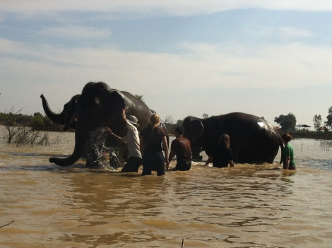 When in a water fight with an elephant - the human is sure to lose.